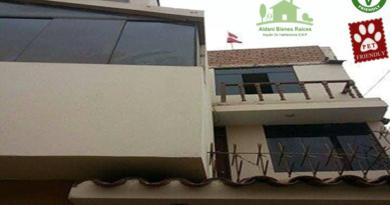 Perú: Aldani Bienes Raices, la inmobiliaria que ofrece opciones vegetarianas