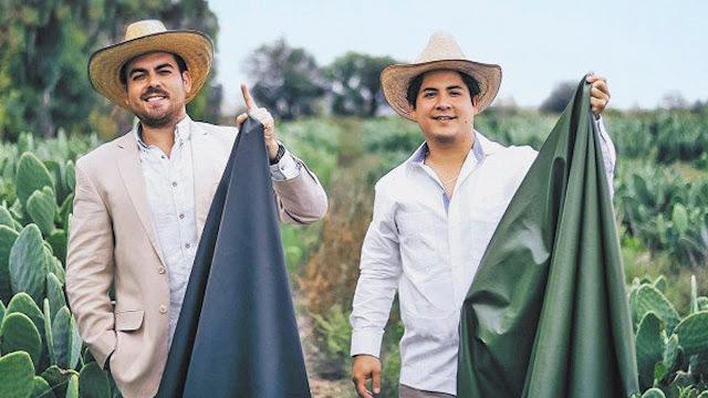 Exitosos empresarios mexicanos crean piel vegana de nopal
