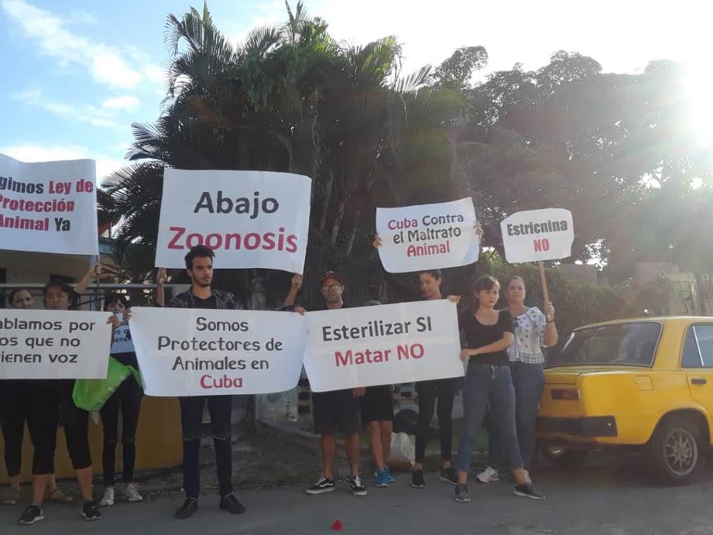 Activistas cubanos protestan contra el maltrato animal en La Habana