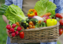 Consumir más frutas y verduras esta vinculado con un menor riesgo de accidente cerebrovascular, según estudio