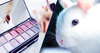 ¡Lo último!: El Senado de México aprueba la prohibición de pruebas cosméticas en animales