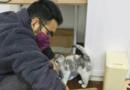 Conoce al héroe de Wuhan quien cuido de los animales abandonados durante el inicio del COVID-19 en China