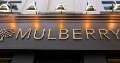 mulberry go vegan