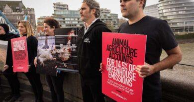 El famoso actor Joaquin Phoenix dice: «Rechacen la crueldad y vuelvanse veganos»