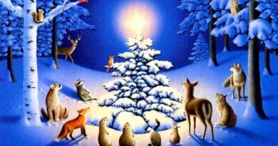 ¡La navidad y el regalo más maravilloso!
