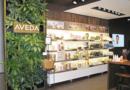 La marca de belleza Aveda se vuelve completamente vegano